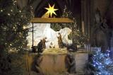 Wrocławianie odwiedzają bożonarodzeniowe szopki (ZDJĘCIA, FILM)