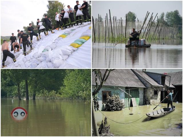 Powódź 2010 w woj. lubelskim