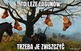 Niesamowita historia laguna z Krakowa podbija internet! Zobacz MEMY!