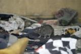Trwa walka ze szczurami! Ruszyła jesienna akcja deratyzacji miasta