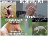 Memy o jesieni 2019: Jak ją widzą internauci? Najlepsze obrazki, demotywatory i memy o jesieni w internecie (26.09.2019)