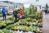 Wiosenny Targ Ogrodniczy na MTP w Poznaniu: Kupisz tu nie tylko rośliny do ogrodu i na balkon
