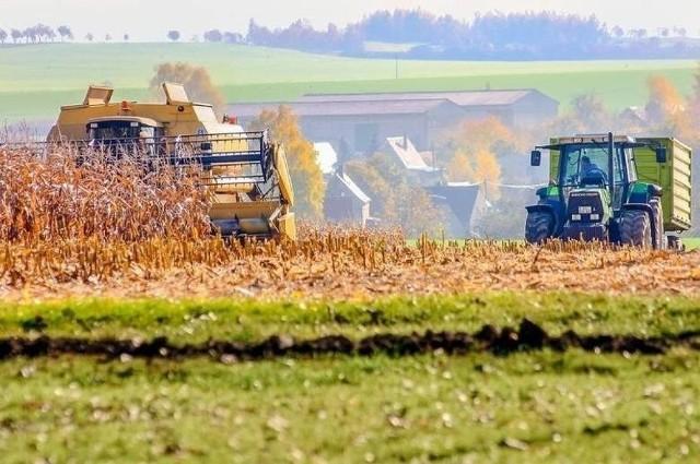 Producenci rolni, którzy zdecydują się działać razem, mogą otrzymać spore pieniądze