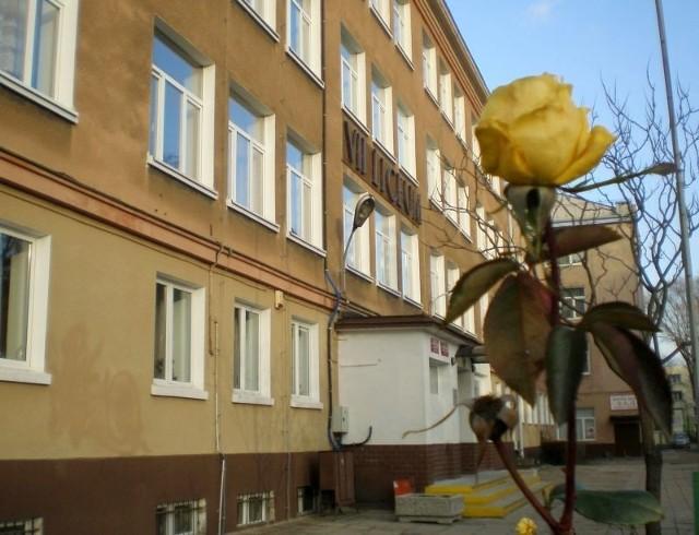 Zimą 2011/2012 kwitną nie tylko forsycje. Na trzy dni przed nadejściem Nowego Roku przed zielonogórskim VII Liceum Ogólnokształcącym mogliśmy podziwiać... kwitnącą różę... Sfotografował ją dziennikarz obywatelski Pintaliano z portalu mmzielonagora.pl