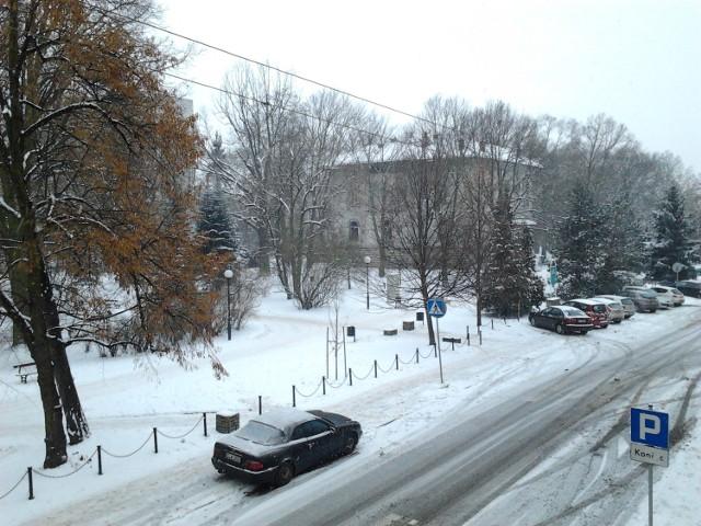 W Łodzi pada śnieg