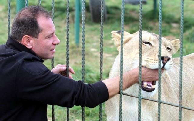 Mimo epidemii ogrody zoologiczne i schroniska pracują normalnie