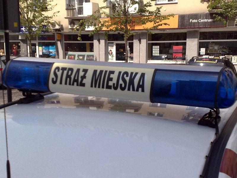 : Strażnik za wykroczenie popełnione w tym samym miejscu...