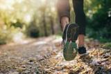 Można zapisać się na nowy bieg po Puszczy Zielonka. Jesienią biegacze będą rywalizować na trzech dystansach od 51 do 14 km