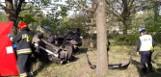 Śmiertelny wypadek na Strykowskiej w Łodzi! Auto uderzyło w drzewo! Zginął 19-letni chłopak ZDJĘCIA