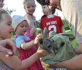 Dzieci miały opolskie zoo na wyłączność