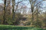 Mieszkańcy gminy Otyń będą sprzątać Rezerwat Przyrody Bażantaria. Akcję organizuje Stowarzyszenie Przyjaciół Ziemi Otyńskiej
