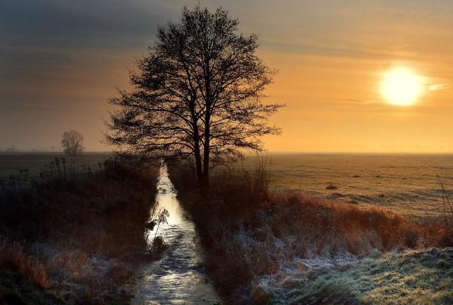 Wschód słońca w okolicach Dzwoli i Konstantowa