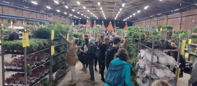 Festiwal roślin w Czasoprzestrzeni w Zajezdni Dąbie we Wrocławiu.