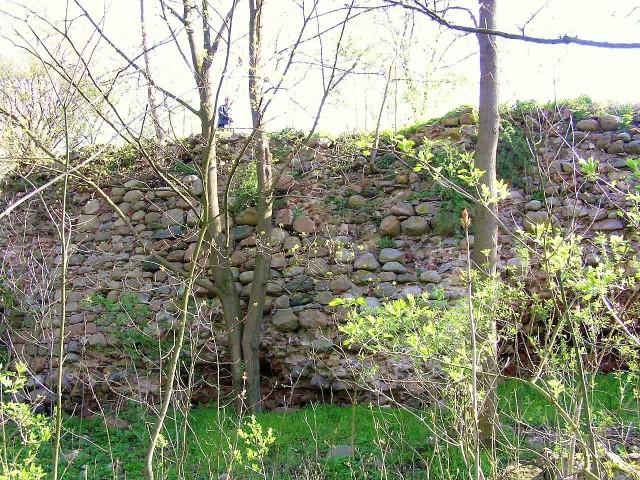 Ruiny zamku krzyżackiego w Lipienku. Zachował się tylko mur obwodowy wspierający zamkowe wzgórze oraz piwnice