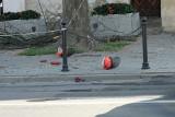 Białystok. Śmiertelny wypadek podczas wycinki drzew przy Rynku Kościuszki. Przed sądem stanie mężczyzna odpowiedzialny za bhp (zdjęcia)