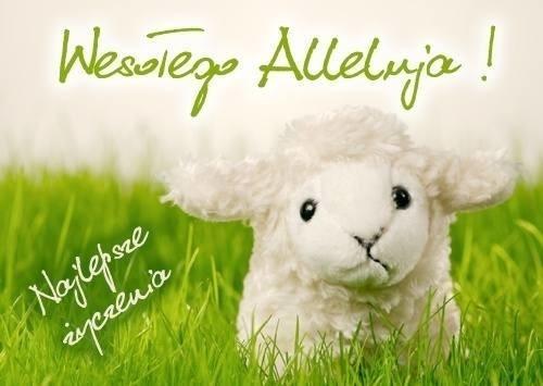 życzenia Wielkanocne Messenger życzenia Sms Fajne Wierszyki