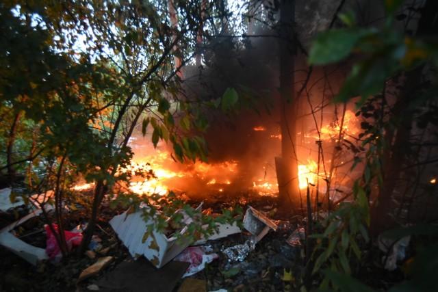 W Sosnowcu paliły sie krzewy, trawy i śmieci