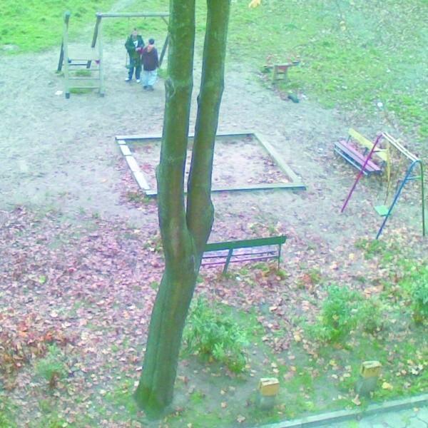 Pełno tu gnijących liści i śmieci pozostawionych przez młodzież – napisał nasz Czytelnik i przysłał zdjęcie. – Nikt nie dba o czystość tego podwórka.
