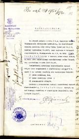 Majątek prezydenta z 1919 roku. Miał dom, chlew i 17 sklepów