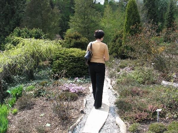 Turyści coraz chętniej odwiedzają Arboretum w Bolestraszycach pod Przemyślem.