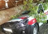 Kruszwica. Samochód Nadgoplańskiego WOPR przygnieciony przez topolę. Na szczęście ratownicy nie ucierpieli [zdjęcia]
