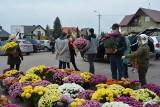 """""""Akcja chryzantemy"""" w Olszewie-Borkach cieszyła się dużym zainteresowaniem mieszkańców. Rozdano blisko 300 chryzantem! 8.11.2020"""