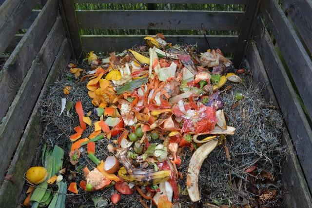 KompostKompost poprawia strukturę gleby, a zawarta w nim próchnica użyźnia podłoże.Ten naturalny nawóz uzyskać można z odpadów organicznych, takich jak: skoszona trawa, liście, gałązki i odpady kuchenne. Miejsce, w którym stanie kompostownik, powinno być lekko wzniesione, żeby woda opadowa nie zalewała kompostu oraz osłonięte od wiatru i zacienione.
