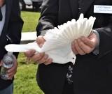Lot gołębi z Watykanu do Wadowic w 100-lecie urodzin Jana Pawła II. Hodowcy zapraszają do akcji gołębiarzy z całej Polski