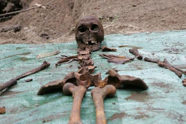 Od piątku w Kostrzynie trwają ekshumacje żołnierzy radzieckich. Do wczoraj z ziemi wydobyto szczątki 181 czerwonoarmistów. A będzie ich znacznie więcej.
