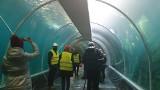 Główny zbiornik łódzkiego Orientarium przeciekł. Usterka pojawiła w akwarium dla rekinów. Co dalej z terminem otwarcia?