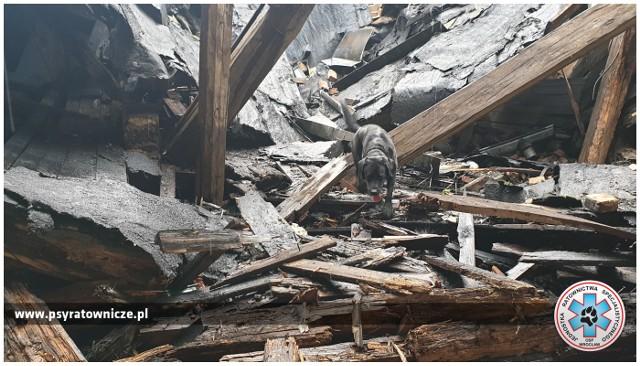 Akcja poszukiwawcza w gruzach pustostanu na Nadodrzu. W akcji OSP Jednostka Ratownictwa Specjalistycznego we Wrocławiu.