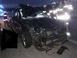 Tragiczny wypadek na autostradzie A1. W zderzeniu z łosiem zginął pasażer samochodu osobowego ZDJĘCIA