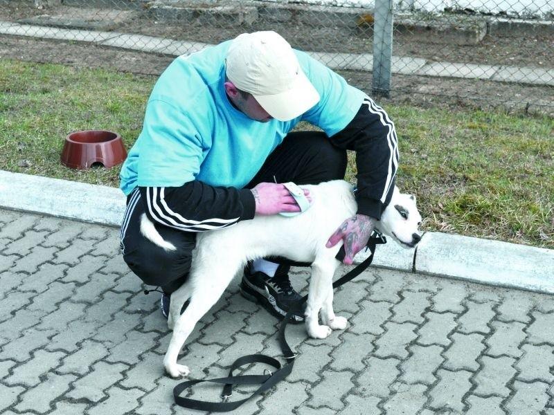 Jeden z więźniów objętych programem podczas pielęgnacji...