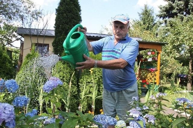 Niektórzy podlewają rośliny nawet dwa razy dziennie.