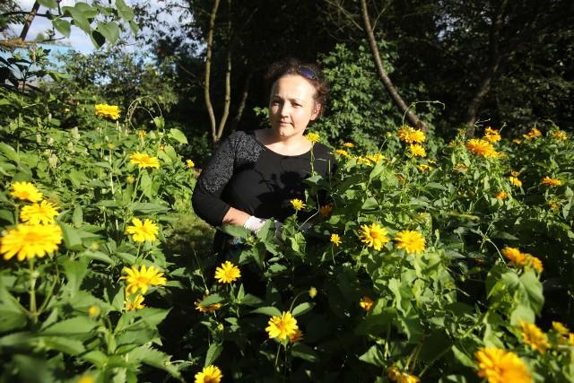 Jadwiga Brzozowska, instruktor ogrodnictwa w Okręgu Podkarpackim Polskiego Związku Działkowców w Rzeszowie