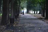 Ludzie wydeptali sobie... zmiany w parku
