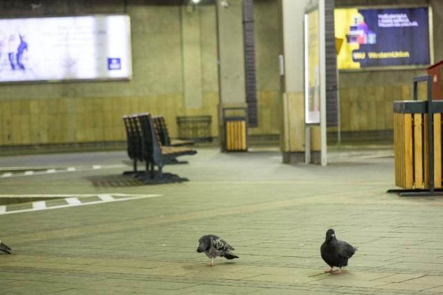Pusty dworzec autobusowy w Krakowie