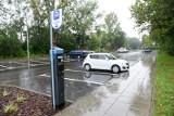 Będzie łatwiej parkować w Toruniu? Urząd Miasta szuka firmy, która stworzy specjalny system