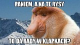 Szpilki nad Morskim Okiem, kolejka na Rysy, czyli Janusz na wakacjach w górach. Zobaczcie najlepsze memy!