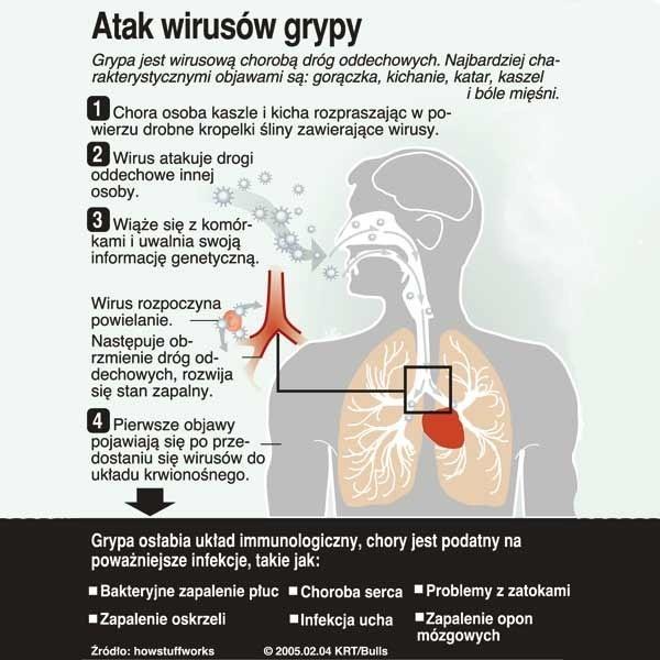 Grypa to wirusowa choroba dróg oddechowych.