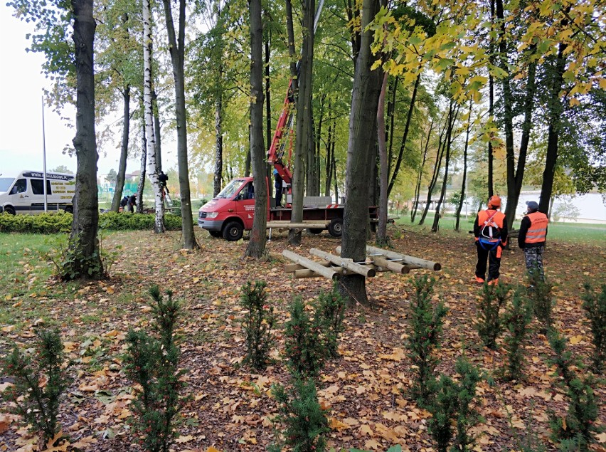 Trwa budowa bezobsługowego parku linowego w Szydłowcu. Gmina...