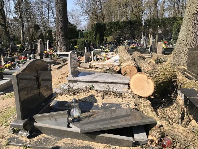 Pomniki zostały uszkodzone podczas wycinki drzewa.
