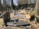 Skandaliczna wycinka na cmentarzu. Zniszczono kilkanaście pomników. Kto za to zapłaci?