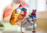"""Ranking kardiologów w Lublinie. Oceny wystawili pacjenci na portalu """"Znany lekarz"""""""