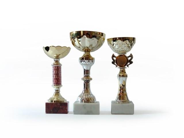 Nagrody otrzymali ludzie, którzy działają na rzecz  lokalnej społeczności