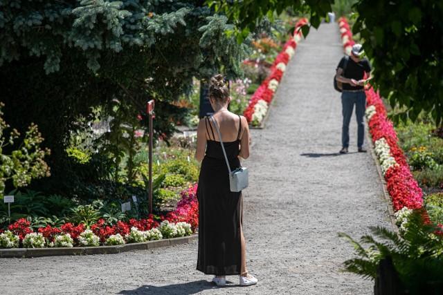 28.07.2020 krakowogrod botaniczny  fot. anna kaczmarz / dziennik polski / polska press