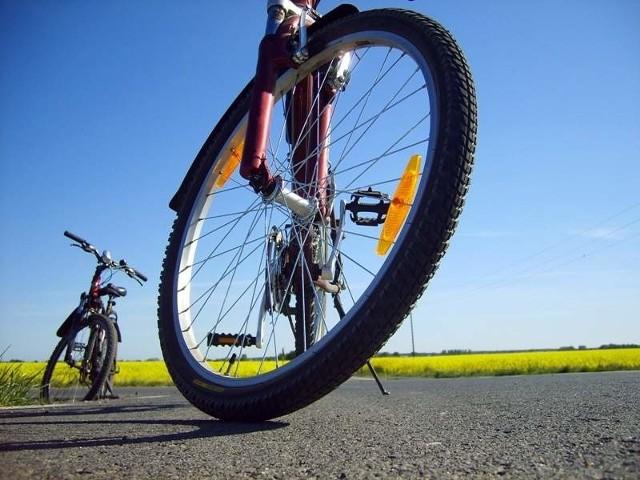 Rowery są coraz popularniejsze