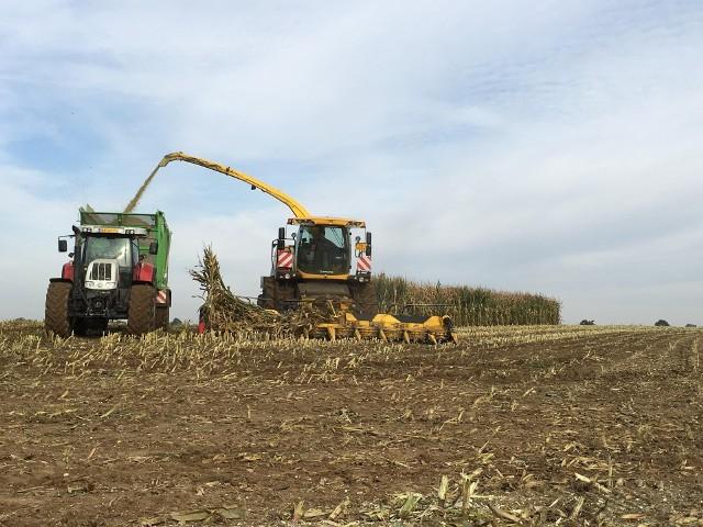 O zwrot akcyzy za paliwo rolnicze może starać się producent rolny