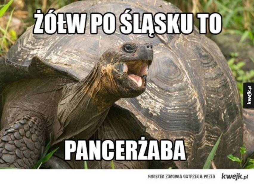 Beka ze Śląska. Zobaczcie najlepsze memy....