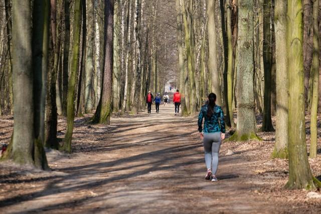 Poznańskie lasy zostały otwarte w zasadzie tylko dla osób dojeżdżających przez nie do pracy. Za spacer czy rekreacyjną jazdę nadal można otrzymać mandat.